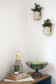 DIY Hanging Planters |  Goodwill Industries International, Inc.