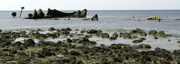 """Shipwreck of the Prince George off the """"Hondsbossche Zeewering"""", near the Heerehuisje in Schoorl (The Netherlands)"""