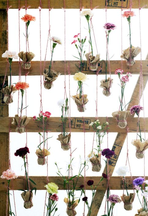 A collection of single carnations make the prettiest displays.