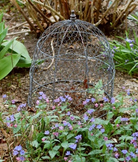 565 best images about contain it gardening urns for Garden cloche designs