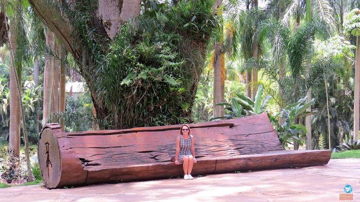 Arte ao ar livre – Conhecendo o Instituto Inhotim em Minas Gerais