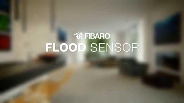 Niezwykły czujnik, jeden z wielu jakie może ułatwić Twoje życie, gdy tylko swój dom lub apartament wyposażysz w system inteligentnego domu Fibaro.