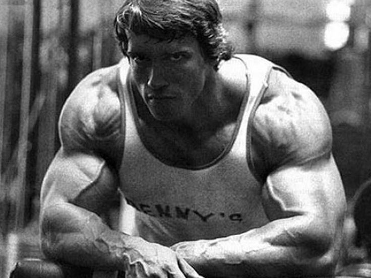 Image result for arnold schwarzenegger bodybuilding