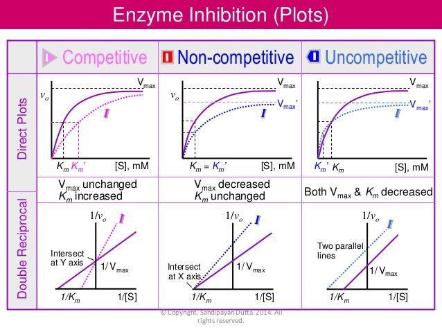 competitive vs noncompetitive inhibition km vmax