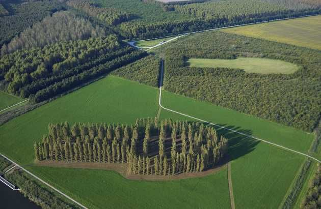 http://www.depaviljoens.nl/page/286  Marinus Boezem, The Green Cathedral, 1978-1996 poplars planted in 1987  location Almere near Vogelweg.  Boezem conceived the idea of a Gotisch Groei Project (Gothic Growth Project) in a polder landscape. In 1987, this concept was applied in practice in De Groene Kathedraal (1978-1996). On an elevation in the flat countryside, Lombardy poplars (populus nigra Italica) have been planted in the shape of the ground plan of the Notre-Dame de Reims (1211-1290).