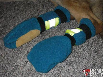 Easy DIY Dog Boots - ROMP Italian Greyhound Rescue Chicago