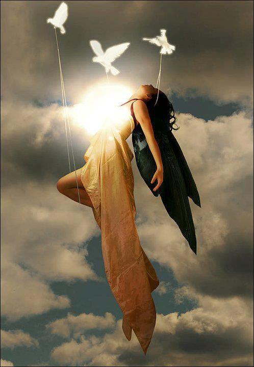 ~•დ╮❤╭დ•~    When love is lost, do not bow your head in sadness; instead keep your head up high and gaze into heaven for that is where your broken heart has been sent to heal.