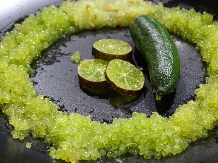 Finger Lime: elegante e naturale caviale di limone