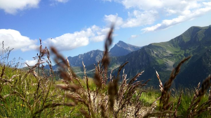 Tatry Mountains Nature