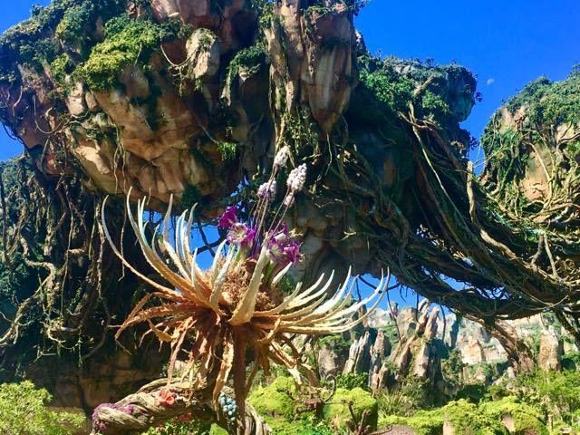 Disney Will Live Stream Pandora - The World of Avatar Dedication Ceremony on May 27th.