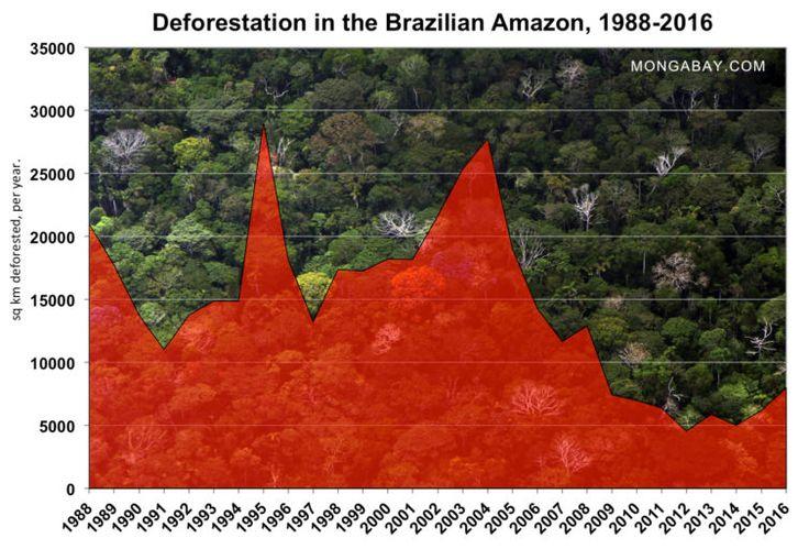 | Desmatamento na Amazônia brasileira aumentou 29% no último ano | 29.12.2017
