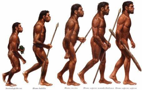 Homo sapiens anatómicamente moderno hace referencia a miembros de la especie Homo sapiens con una apariencia física consistente con los fenotipos de los seres humanos modernos.  Se piensa que los humanos anatómicamente modernos que habitaban en África se dispersaron hacia Europa y Asia en el Pleistoceno medio, hace aproximadamente 130,000 años, en varios movimientos migratorios a través de la península árabe.