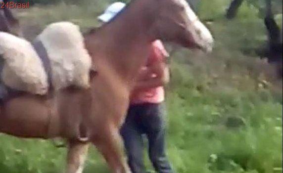 Estuprador diz que ato sexual com animal foi encenação em Vale do Sol
