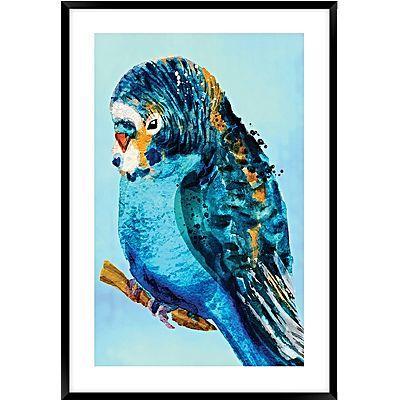 Blue Budgie #2 Framed Wall Art