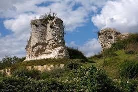 Hasil gambar untuk Le Château-Fort de Montchauvet