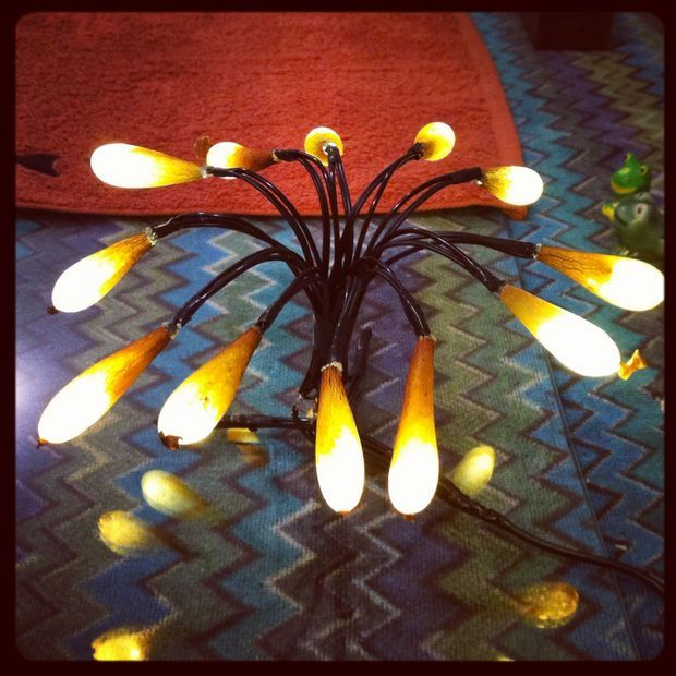 Picture Of Seaweed Pods Lamp