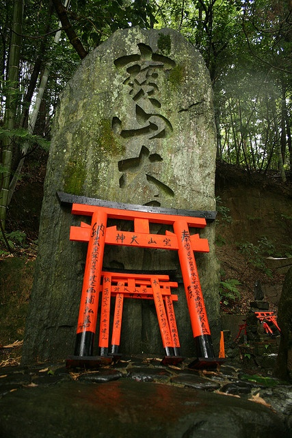 Fushimi-Inari shrine, Kyoto/伏見稲荷大社、京都