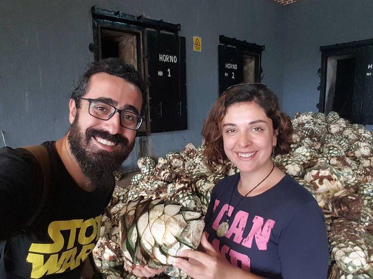Meksika denilince akla gelen ilk şey tequila olabiliyor. Biz de tekilanın çıktığı ona ismini veren Tequila şehrine geldik. Bugün buradaki üreticilerden biri olan La Cofradia'nın tesislerini gezme fırsatı bulduk. Mavi agaveden tekila şişesine kadar olan yolculuğunu dinledik. Hikayelerden izlemeyi unutmayın... #uzaklaryakin #mexico #tequila #lacofradia #cofradia #tequilacofradia