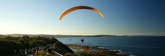 Paraglider, Long Reef, Sydney, NSW, Australia