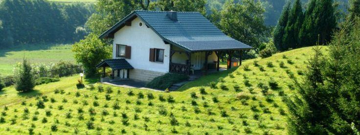 Unser Ferienhaus befindet sich unweit vom Rennsteig inmitten der Natur des Thüringer Waldes