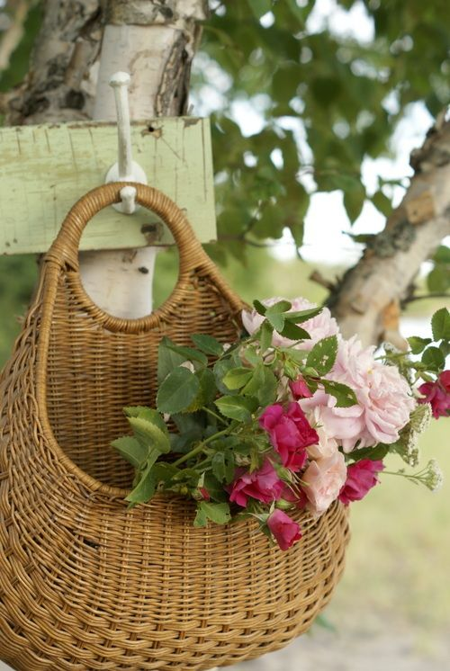 hanging basket with roses