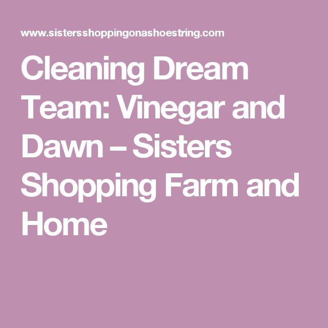Cleaning Dream Team: Vinegar And Dawn