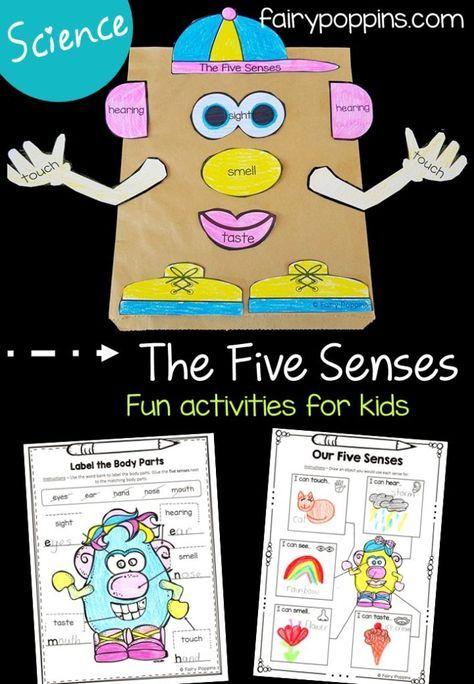 Five Senses Activities For Kids | Senses activities, Five ...