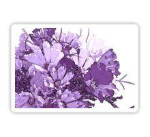 Sticker - #Purplecosmos #artsycosmos #purpleflowers #sandrafoster