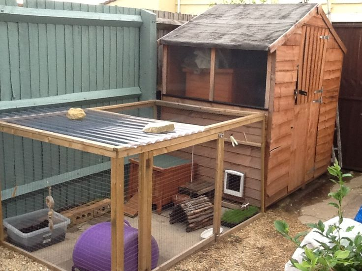 shed/run combo  Rabbits United Forum
