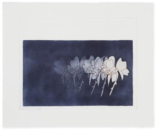 Denise Green - Works On Paper | '(Brenda)', 2006, 16 1/2 x 13 1/2, etching.  Southeastern Center for Contemporary Prints.