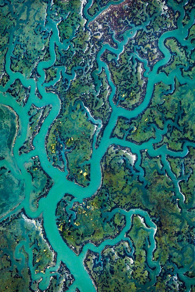 Aerial view of Elkhorn Slough, Moss Landing, California