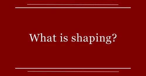 What is shaping--Mary Hunter at Dogtrainingology.com