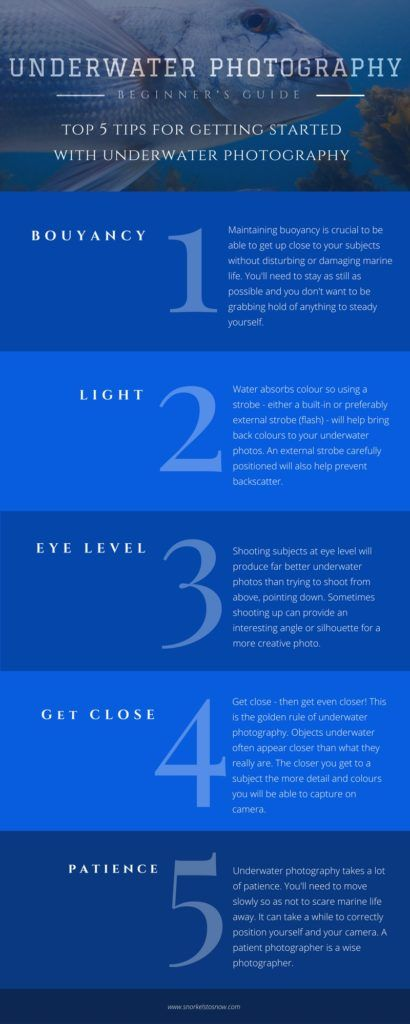 Tips for underwater photography! Follow these basic five tips if you are starting off in underwater photography. Above all - get super close to your subjects!