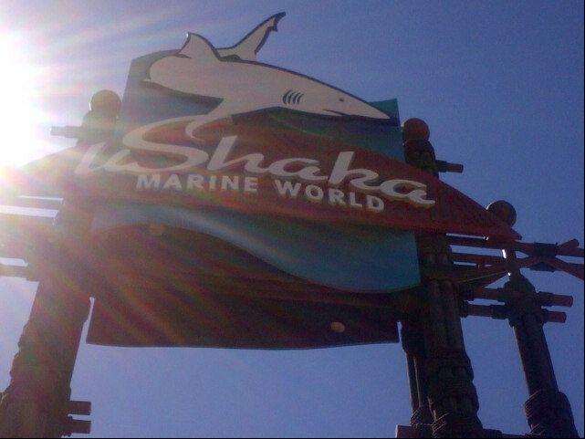Stop 4 uShaka Marine World in ITheku, KwaZulu-Natal