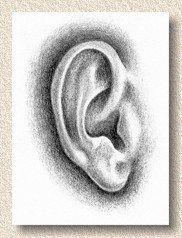 Sehen Sie die Ohren in einem Traum – Arancak #kulak