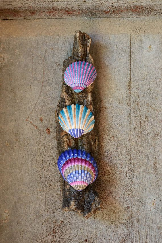 Wall decoration made with painted seashells by Bidigo on Etsy