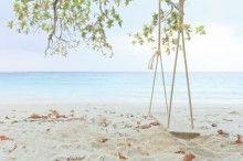 Fototapeta F2557 - Drewniana huśtawka na plaży