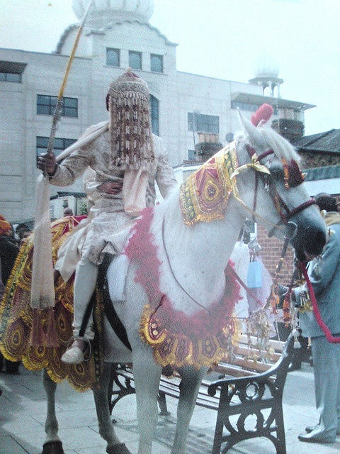 INDIA:  Indian wedding tradition: Groom arrives on a horse with his face covered so the bride cannot see him before the wedding.