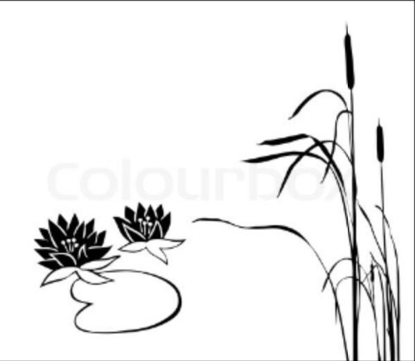 free printable coloring pages cattails plants   Cattails Plant Coloring Pages Sketch Coloring Page