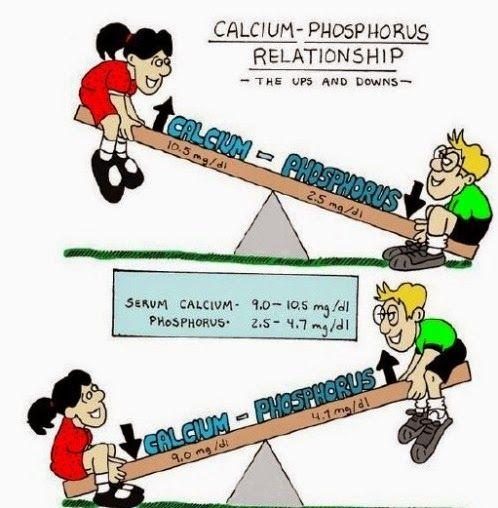 serum calcium and phosphate relationship