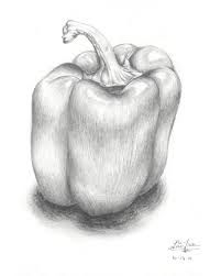 """Use of pencil helps capture the smooth-like texture of a capsicum. Lighter parts must've used lighter and harder pencils such as """"HB"""" or other """"H"""" pencil weights."""