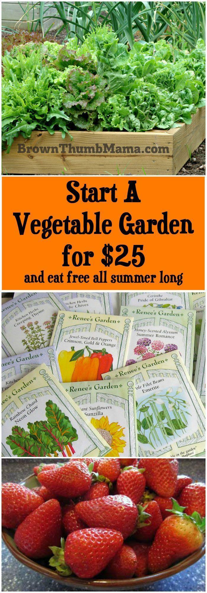 25 Best Ideas About Raised Herb Garden On Pinterest Raised Gardens Garden Beds And Raised