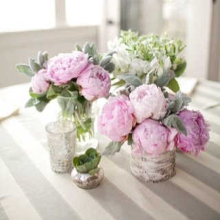 Peonies Pink Peonies And Birches On Pinterest