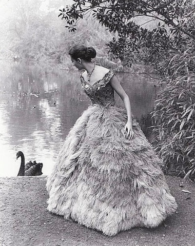 woman by a lake with swan