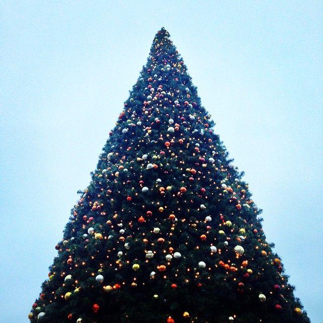 Weihnachtsbaum vor dem Fürther Bahnhof