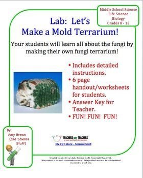 Let's Make a Mold Terrarium! (Biology Lab on Fungi)  Kids love an icky, gooey science lab, and this one is no exception!