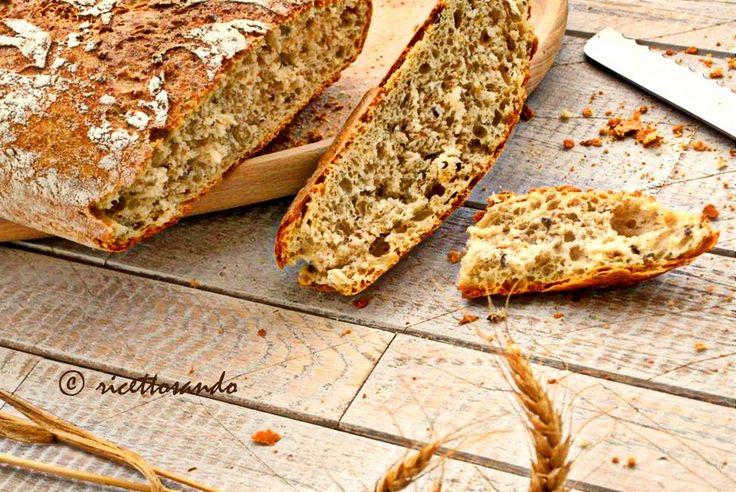 Pane integrale ai semi. #ricetta di @luisellablog
