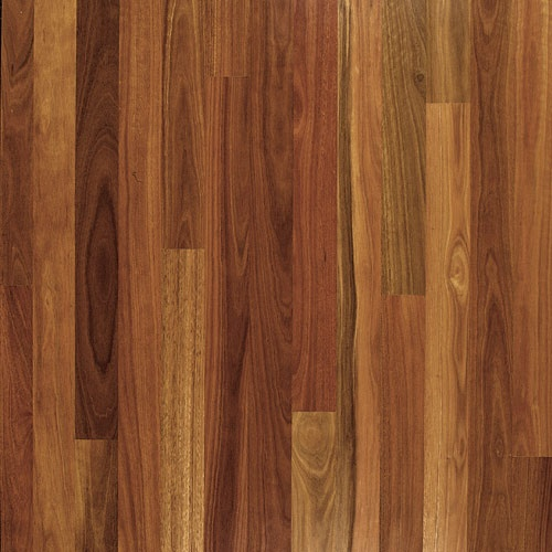 Spotted Gum Wood Floor