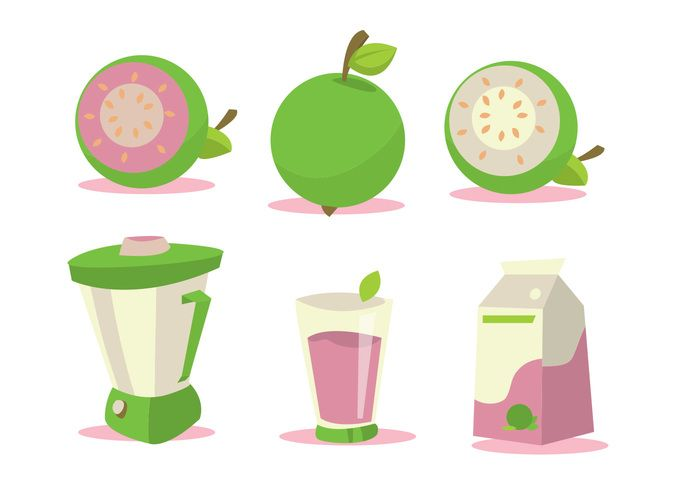 Free Guava Vector Set