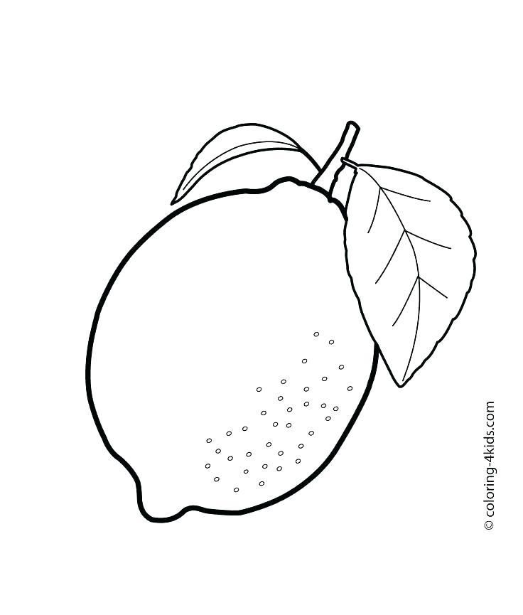 Fruit Coloring Pages Free For Kids Fruits Kindergarten Pdf Fruit